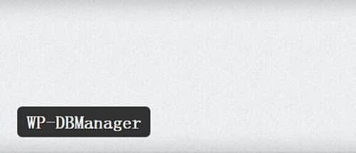 DBManager1